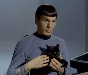 nimoy with cat