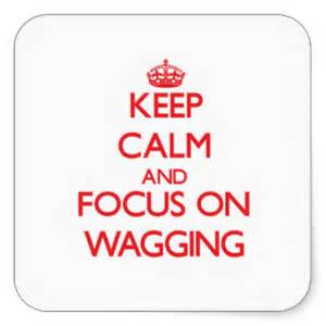 wagging focus and keep calm