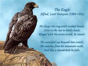Alfred Lord Tennyson's Eagle poem with pic.