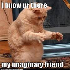 imaginary friend held by cat