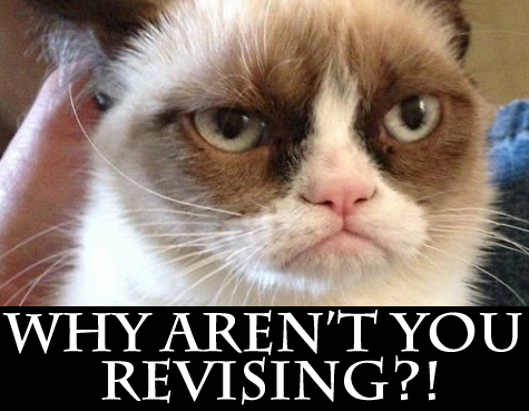 Revision with Grumpy-Cat