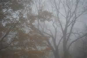 Fog 2 for Hada